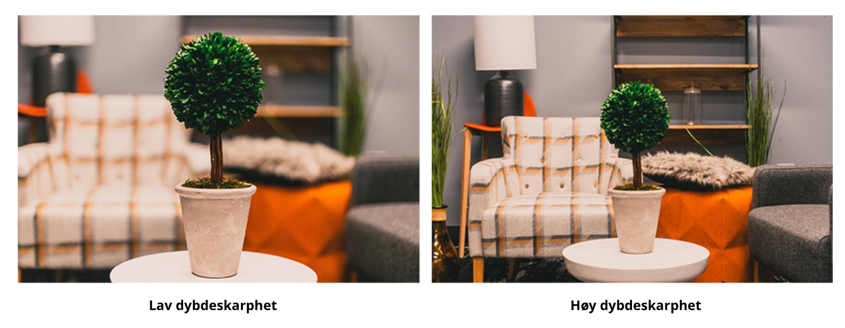 Bilde for å vise forskjellen på lav og høy dybdeskarphet. Tenkt på kamera innstillinger når du tar opp video.